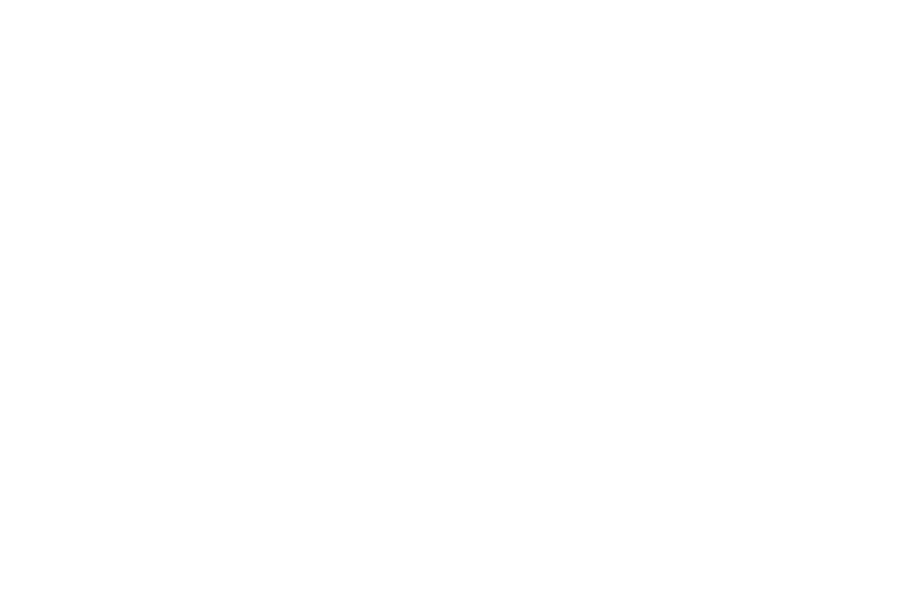 The Endless Honeymooners